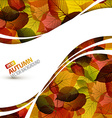 Colorful autumn background vector image vector image