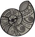 snail shell vector image