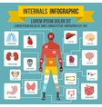 Internals infographic elements flat style vector image