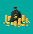 cloth bag with money golden coins stacks vector image