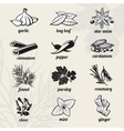 Spice icons set vector image