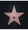 Fame star with place for nameTop view vector image
