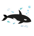 orca and fishes vector image