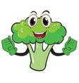 Broccoli vector image vector image