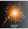 Firework on Transparent Background vector image vector image