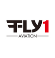 flying aviation logo vector image