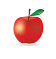red apple vector image