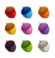 cartoon colorful acorn icons set vector image