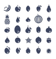 Exotic tropical fresh fruits flat silhouette vector image