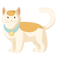 Cartoon white and orange cat vector image