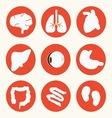 Body icon vector image