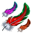 Few colorful magical fluffy feathers isolated vector image
