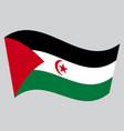 flag of western sahara waving on gray background vector image