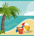 seaside view on beautiful sunny beach with palm vector image