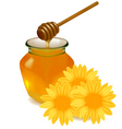 honey with yellow flowers vector image