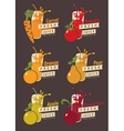 set fruits and glass with fresh juice vector image vector image
