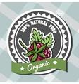 Natural Food 6 vector image