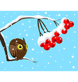 Winter image with red berries and owl vector image vector image