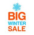 big winter sale template vector image vector image