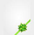 gift bow ribbon beautiful greeting card template vector image