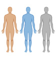 Human body outline in three colors vector image vector image