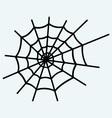 Spider net vector image