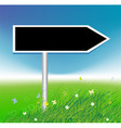 arrow on green field background vector image vector image