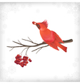 Winter Christmas Bird Rowan Tree Branches vector image
