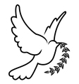 symbol of dove olive branch vector image vector image