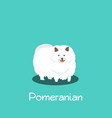 an depicting pomeranian dog on turquoise vector image