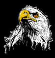 White Eagle Head vector image