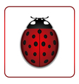 Ladybug red cartoon icon realistic vector image