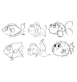 Different fishes in a doodle design vector image