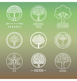 tree logos and badges vector image vector image