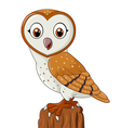 Cartoon barn owl isolated on white background vector image