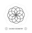 sacred geometry symbol vector image