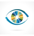 Set of colorful eye icons vector image vector image