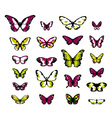highly detailed fantasy butterflies vector image vector image