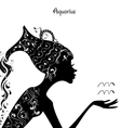 Zodiac sign aquarius fashion girl vector image vector image