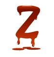 Letter Z vector image vector image