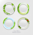 set with green patterns on plates vector image