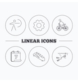 Diving biking and archery icons vector image