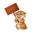 Cute Groundhog holding blank sign vector image vector image