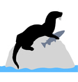 Otter on rock with fish vector image vector image