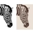 artwork head profile zebra vector image