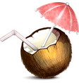 Coconut with Umbrella and Straw vector image