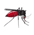 Mosquito drinks blood isolated on white background vector image