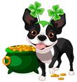 Boston Terrier celebrates Saint Patrick Day vector image