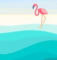Flamingo background vector image