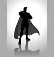superhero in gallant pose vector image